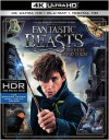 Fantastic Beasts and Where to Find Them (4K UHD Review)