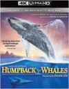 Humpback Whales (4K UHD Review)