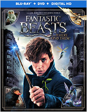 Fantastic Beast and Where to Find Them (Blu-ray Disc)